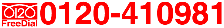 0120-410981